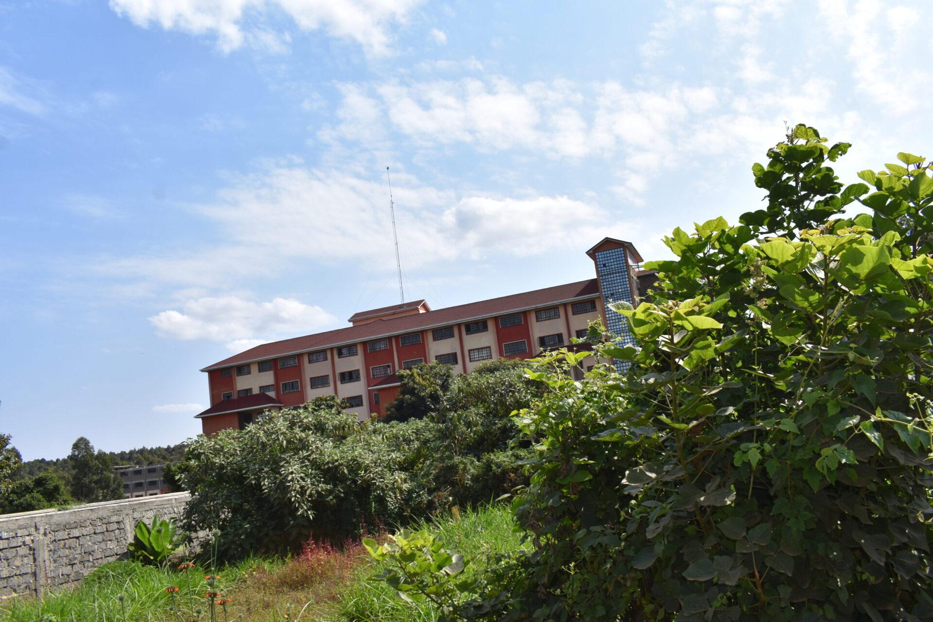 50 x100 plot next to damacrest school Thogoto