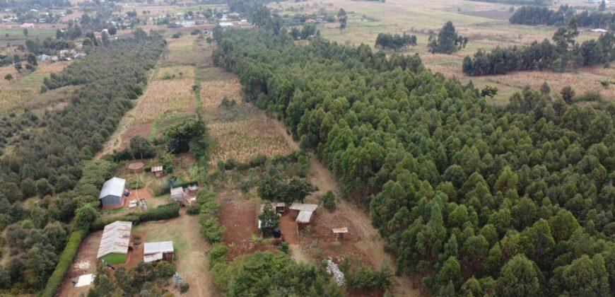 Valley View Estate 50×100 Plots in Thigio,Gichagi (1km from Tarmac)